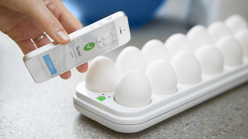 Egg_Minder___Quirky_Products