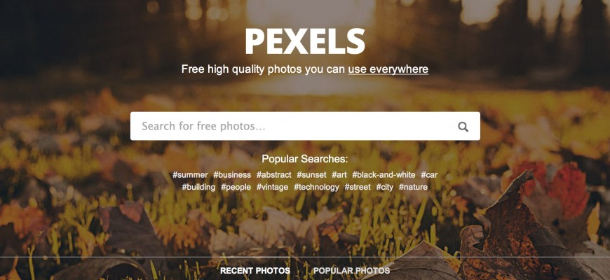 Pexels_·_Find_Free_High_Quality_Photos